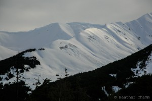 glide cracks along SW aspect of Roaring Ridge